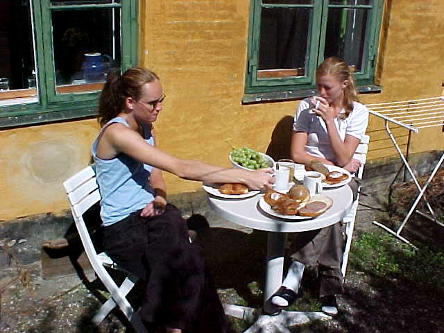 Breakfast in the little backdoor garden. Beautiful, while the sun tried to burn us...